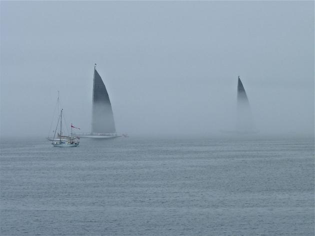 В тумане высокие паруса J-class выглядят очень грозно, как акульи плавники.