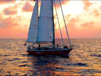 яхта Гуппи
