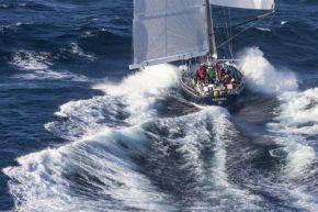 Сам факт участия в Sydney to Hobart Race достоин уважения!