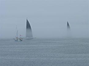 В тумане высокие паруса J-class выглядят очень грозно, как акульи плавники